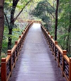 防腐木木栈道环保